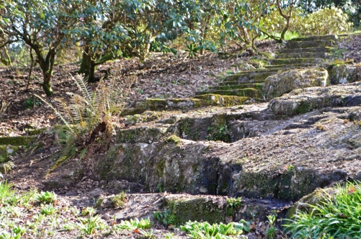 Mount Congreve Garden Dutch Steps © Stuart Blakley