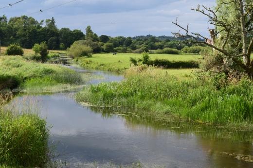 Markree Castle River © Lavender's Blue Stuart Blakley