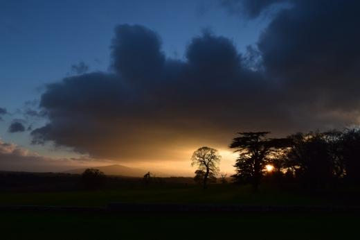 Borris House Estate © Lavender's Blue Stuart Blakley