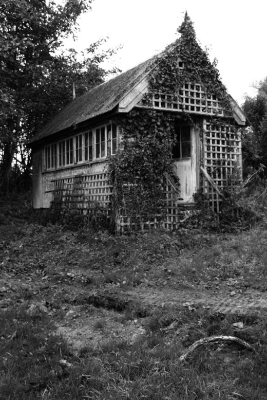 Tyrella House Spider House © Lavender's Blue Stuart Blakley