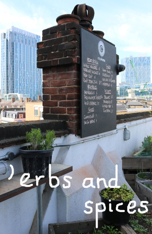 The Culpeper Pub Spitalfields Rooftop Terrace Menu © Lavender's Blue Stuart Blakley