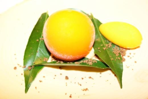 Belcanto Mandarin Sorbet © Lavender's Blue Stuart Blakley