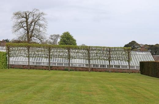 11. Glenarm Castle Walled Garden © Lavender's Blue Stuart Blakley