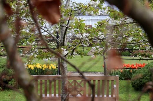 14. Glenarm Castle Walled Garden © Lavender's Blue Stuart Blakley