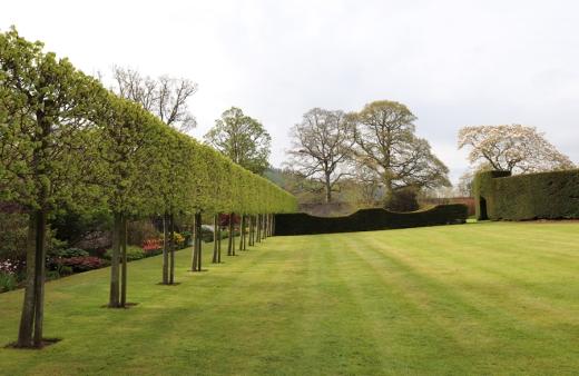 8. Glenarm Castle Walled Garden © Lavender's Blue Stuart Blakley