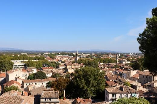 Avignon © Lavender's Blue Stuart Blakley