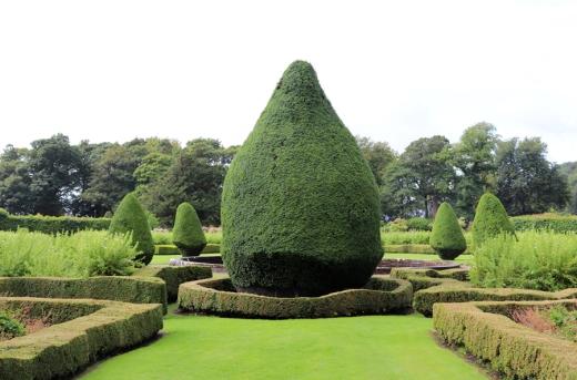 Dunrobin Castle Topiary © Lavender's Blue Stuart Blakley