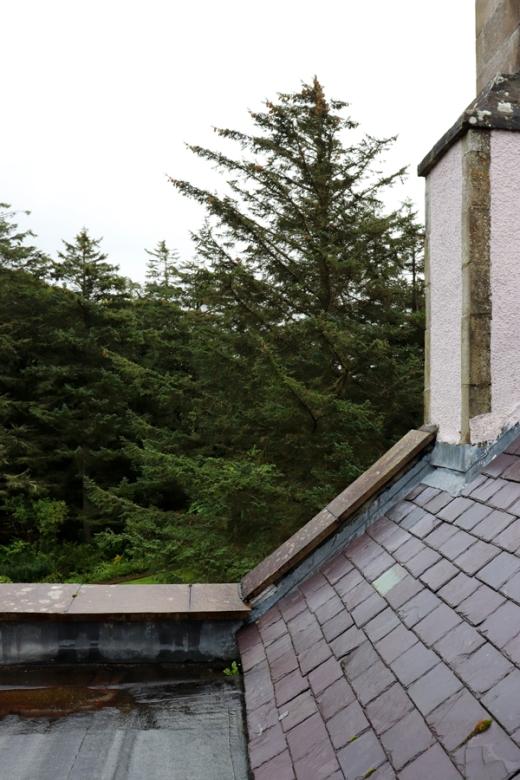 Forss House Hotel Thurso Roofscape © Lavender's Blue Stuart Blakley