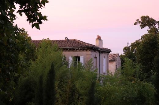 Rooftop View La Divine Comedie Avignon © Lavender's Blue Stuart Blakley