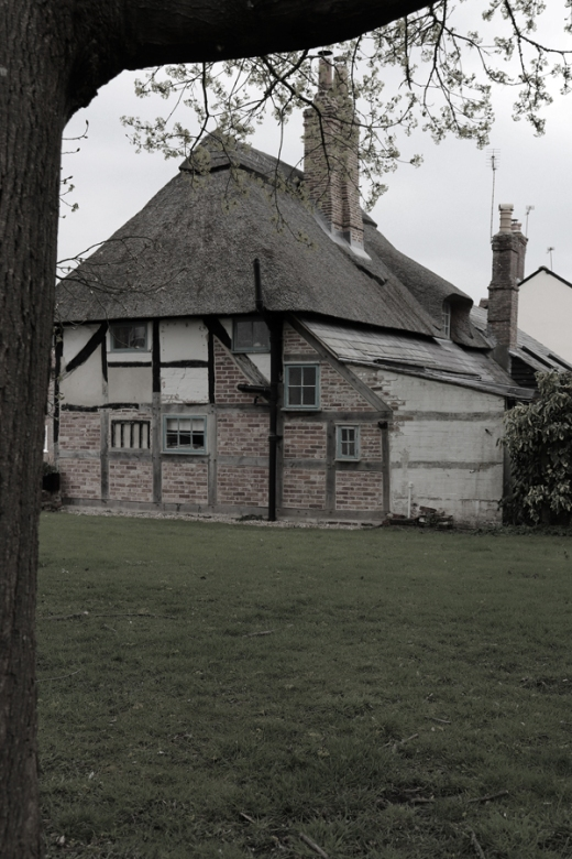 East Meon Village Thatched Cottage © Lavender's Blue Stuart Blakley