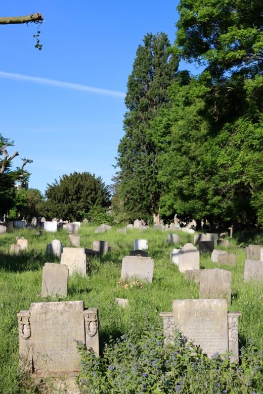 St Mary's Cemetery Battersea London Gravestones © Lavender's Blue Stuart Blakley