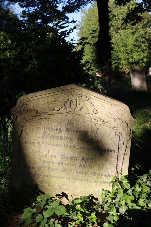 St Mary's Cemetery Battersea London Wild Garden © Lavender's Blue Stuart Blakley