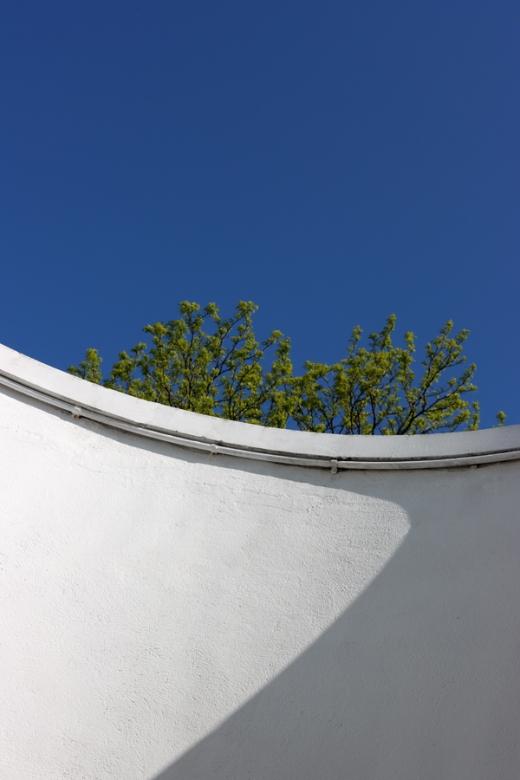 Belair House West Dulwich London Blind Bow © Lavender's Blue Stuart Blakley