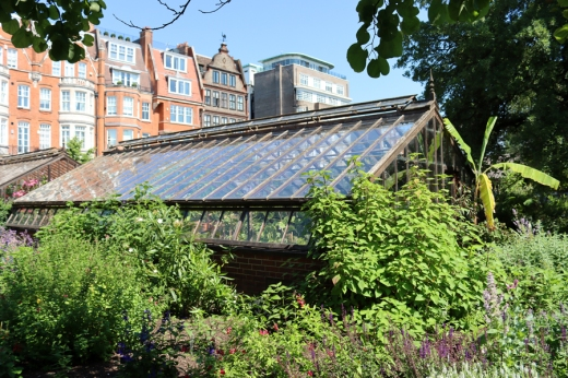 Glasshouse Chelsea Physic Garden London © Lavender's Blue Stuart Blakley