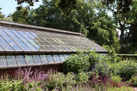 Glasshouse Garden Chelsea Physic Garden London © Lavender's Blue Stuart Blakley