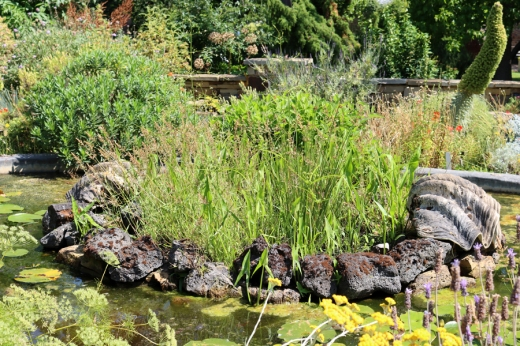 Pond Rockery Chelsea Physic Garden London © Lavender's Blue Stuart Blakley