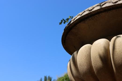 Stone Urn Chelsea Physic Garden London © Lavender's Blue Stuart Blakley