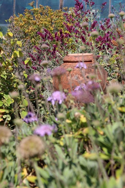 Urn Chelsea Physic Garden London © Lavender's Blue Stuart Blakley